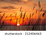 peaceful chesapeake bay sunrise ... | Shutterstock . vector #212406463