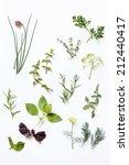 fresh herbs | Shutterstock . vector #212440417