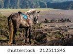 horse in dessert with hindu... | Shutterstock . vector #212511343