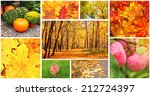 collection of photos with... | Shutterstock . vector #212724397