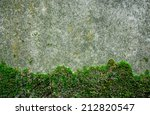 Moss On Old Wall