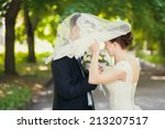 bride  veil  groom | Shutterstock . vector #213207517