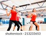 fitness  sport  training  gym... | Shutterstock . vector #213233653