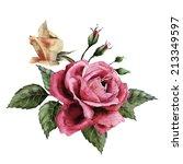 bouquet of roses  watercolor ... | Shutterstock . vector #213349597