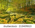 Autumn Landscape Mountain Rive...