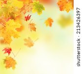 colored autumn leaves falling... | Shutterstock . vector #213426397