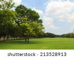 green trees in beautiful park | Shutterstock . vector #213528913