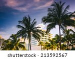 Palm Trees And Buildings In...