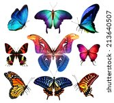 many different butterflies ... | Shutterstock . vector #213640507