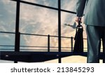 back view of businessman at... | Shutterstock . vector #213845293