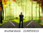 businessman has to decide which ... | Shutterstock . vector #214053313