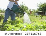 Senior Man Watering Plants In...