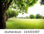 Green Park With Fresh Grass An...