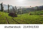 village at mount bromo in bromo ... | Shutterstock . vector #214541533
