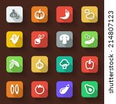 flat icons in a square with... | Shutterstock .eps vector #214807123