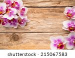 orchids bloom. white with pink... | Shutterstock . vector #215067583
