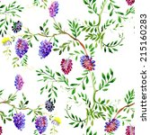 colorful spring wildflowers... | Shutterstock . vector #215160283