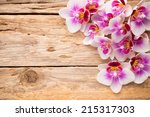 orchids bloom. white with pink... | Shutterstock . vector #215317303