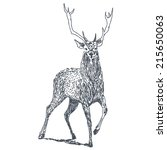 deer sketch drawing isolated on ... | Shutterstock .eps vector #215650063