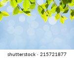 abstract sunny summer bokeh... | Shutterstock . vector #215721877
