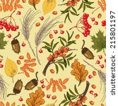 vector seamless pattern  autumn.... | Shutterstock .eps vector #215801197