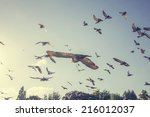 Flock Of Pigeons Flying In The...