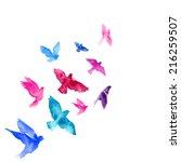 Stock vector watercolor birds 216259507