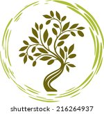 olive tree in a circle | Shutterstock .eps vector #216264937