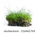 Piece Of Turf With Topsoil In...