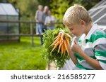 boy holding bunch of carrots...   Shutterstock . vector #216585277