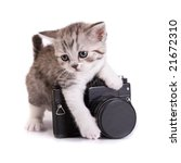 kitten and the camera on a... | Shutterstock . vector #21672310