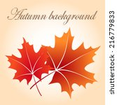 autumn background with red...   Shutterstock .eps vector #216779833