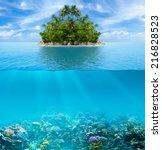 Underwater Coral Reef Seabed...