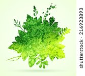 watercolor leaves vector... | Shutterstock .eps vector #216923893