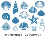 Set Of Various Blue Sea Shells...