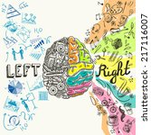 brain left analytical and right ... | Shutterstock .eps vector #217116007
