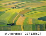 Aerial View Of Agricultural...