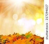 autumn background  | Shutterstock . vector #217294027