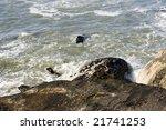sea | Shutterstock . vector #21741253