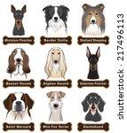 dog   nameplate | Shutterstock .eps vector #217496113
