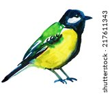 watercolor picture   blue tit | Shutterstock . vector #217611343