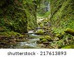 galbena river flowing through a ... | Shutterstock . vector #217613893