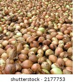 onions being sorted asia