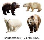 set of bears. isolated over... | Shutterstock . vector #217884823