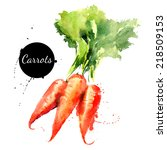 carrots. hand drawn watercolor... | Shutterstock .eps vector #218509153