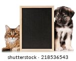 Stock photo pets with blackboard 218536543