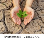hands holding tree growing on... | Shutterstock . vector #218612773