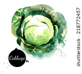 cabbage. hand drawn watercolor...   Shutterstock .eps vector #218772457
