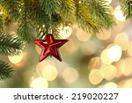 christmas star and lights... | Shutterstock . vector #219020227