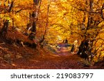 Majestic Colorful Forest With...